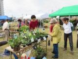 第31回都市緑化祭