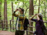 日本野鳥の会大阪支部 箕面公園月例バードウォッチング