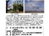 自然ふしぎ発見クラブ「勝部遺跡収蔵庫見学と千里川の自然観察」の開催